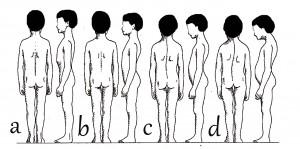 5b) Typy držení těla